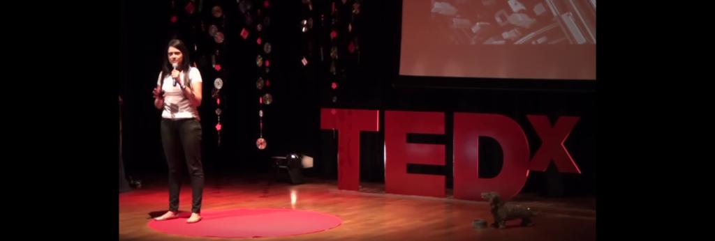 TED Talk Sustentabilidade Clarissa Santiago