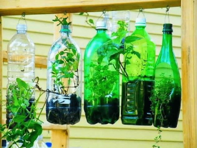 Horta em garrafas pets