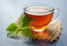 chá de orégano