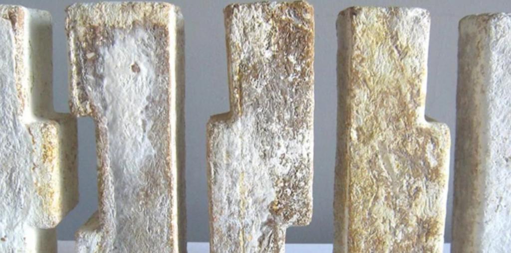 cogumelos bioconstrução