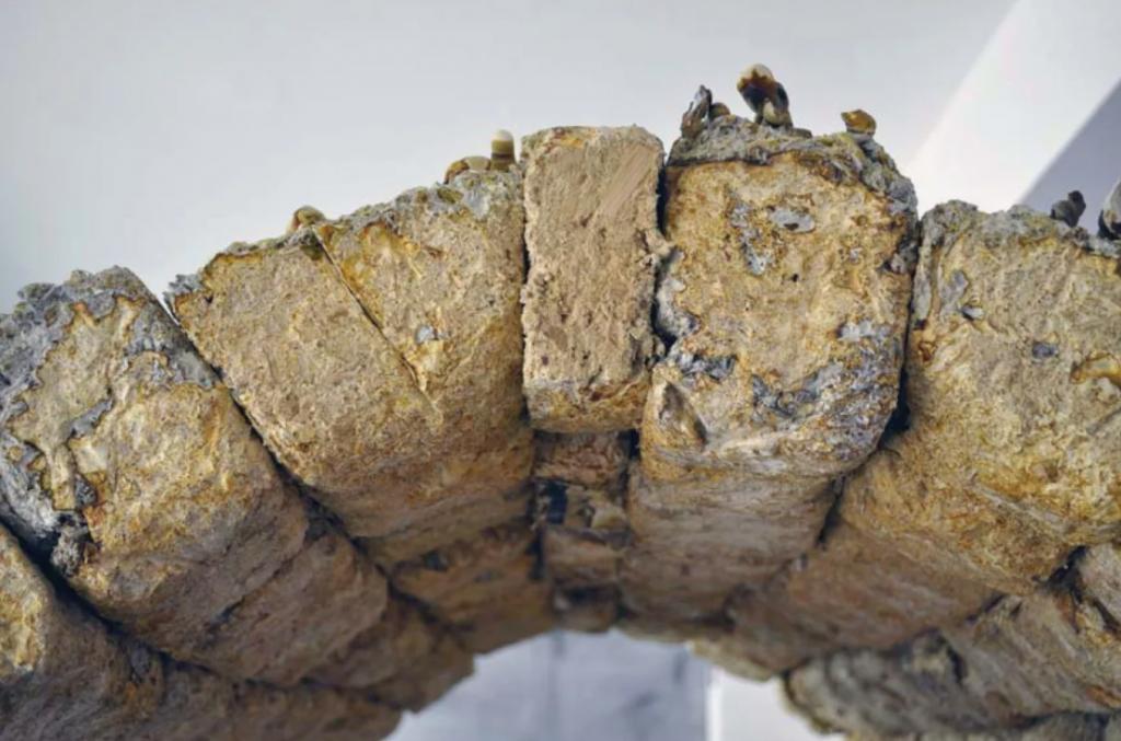 em detalhe tijols de cogumelos