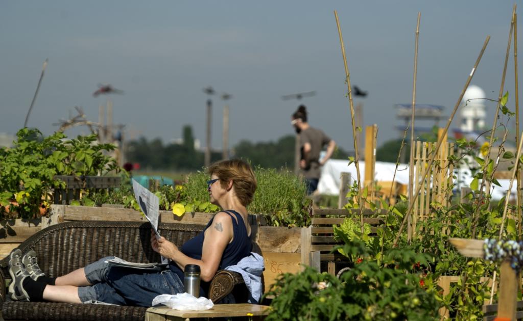 cases de sucesso agricultura urbana