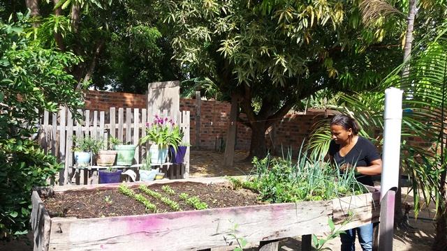 Projeto transforma espaco ociosos em verdadeiras hortas urbanas Foto Rafael porto