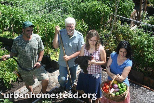 Jules queria além de uma horta em casa, para isso queria ampliar a produção dos próprios alimentos. (Divulgação/Urban Homestead)