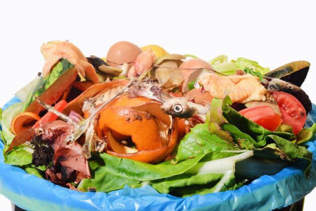 compostagem de resíduos