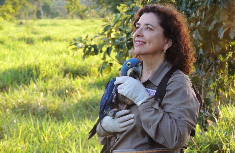 brasileira salvou araras azuis extincao entrou hall fama mulheres cientistas onu