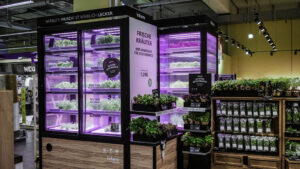 infarm cultivo verduras supermercado inovacao social inovasocial 01