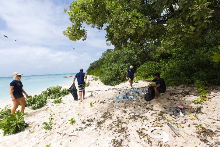 limpando lixo na praia